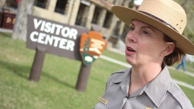 More tourists, more animals leading to more problems in Yellowstone