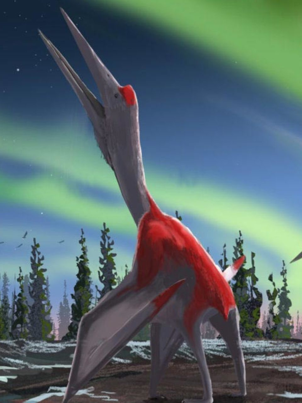Flying Frozen Dragon Of The North Dinosaur With F 16 Sized Wingspan Discovered Kutv